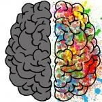 brain-2062049_960_720.jpg