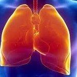 pulmonolog.jpg